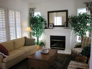 living-room with plants