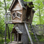 Tree House Project – Make It Last