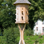 Bird House Tips